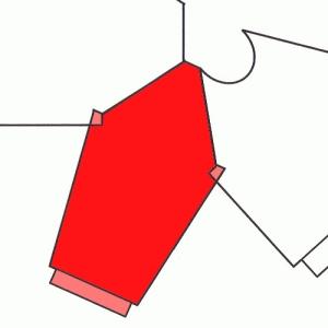 Diagramma di un raglan