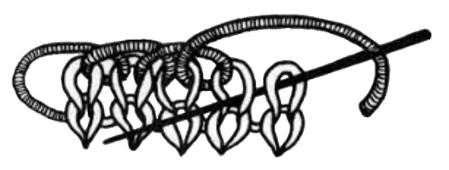 EZ stessa ha tracciato questo disegno per il suo cast on bind off