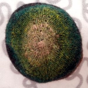 La corona mostra il leggero motivo aspirale formato dagli aumenti
